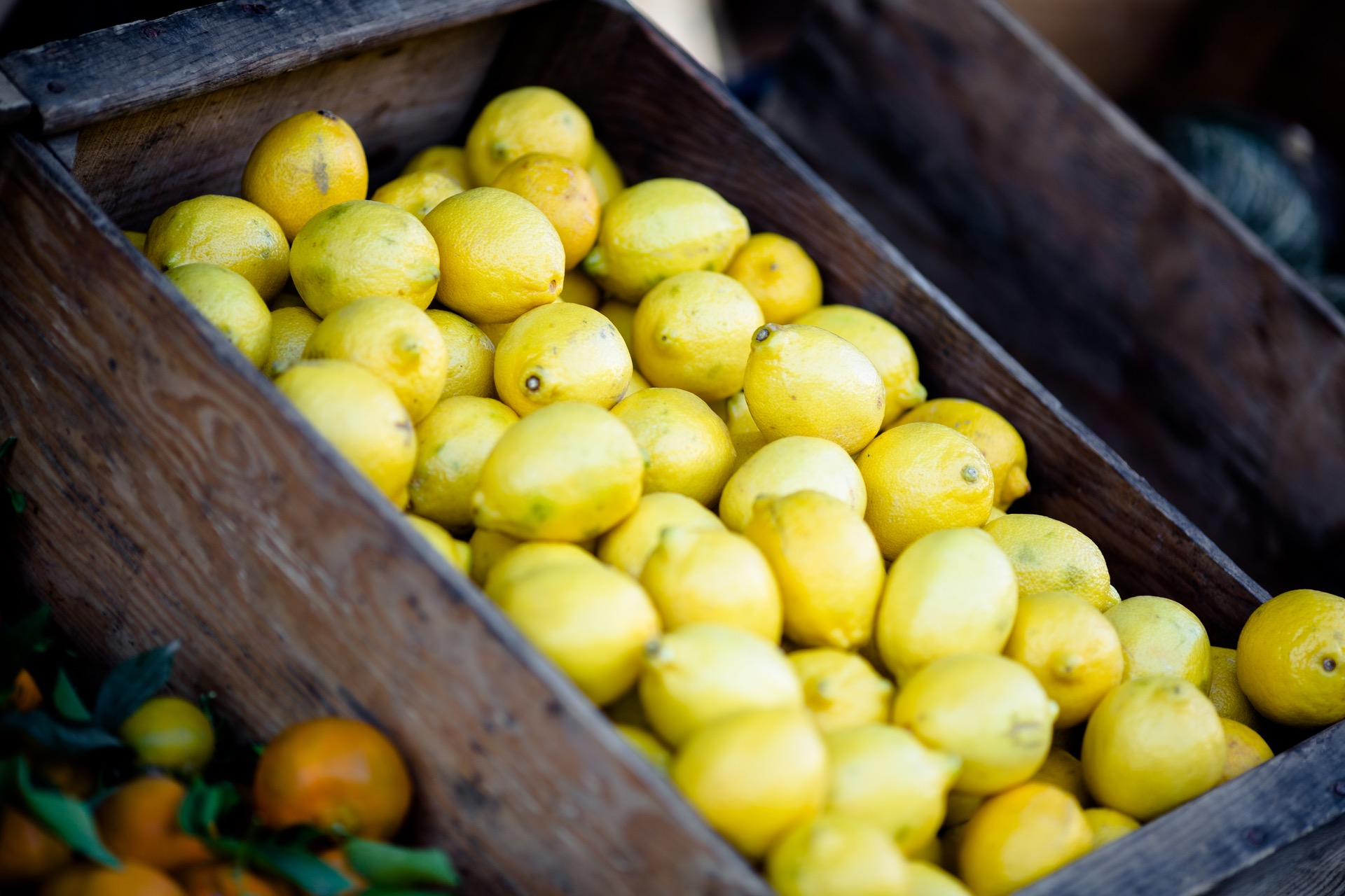 Lemons: A Mental Guide to Life's Hurdles